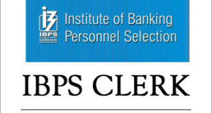 ibps clerk job