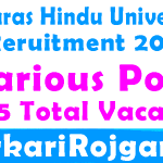 BHU Recruitment Various Post