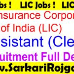 LIC India Assistant